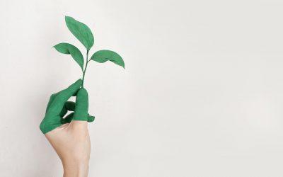 Tænk på miljøet med Green Friday